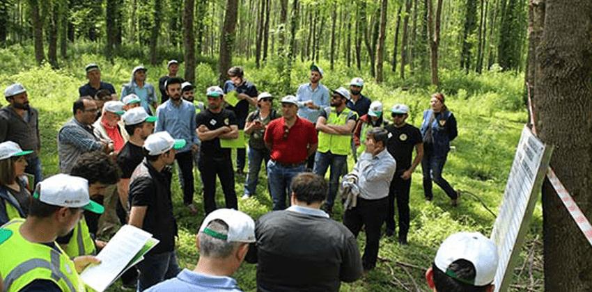 Orman Mühendisliği