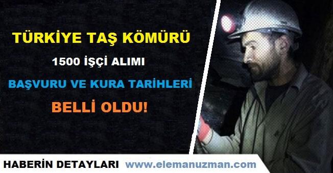 Türkiye Taş Kömürü