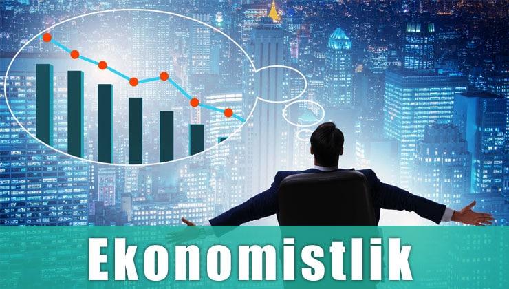 ekonomistlik mesleği yks