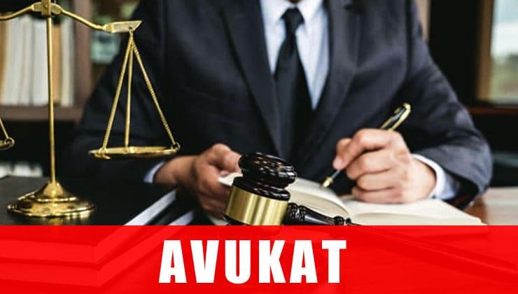avukat mesleği